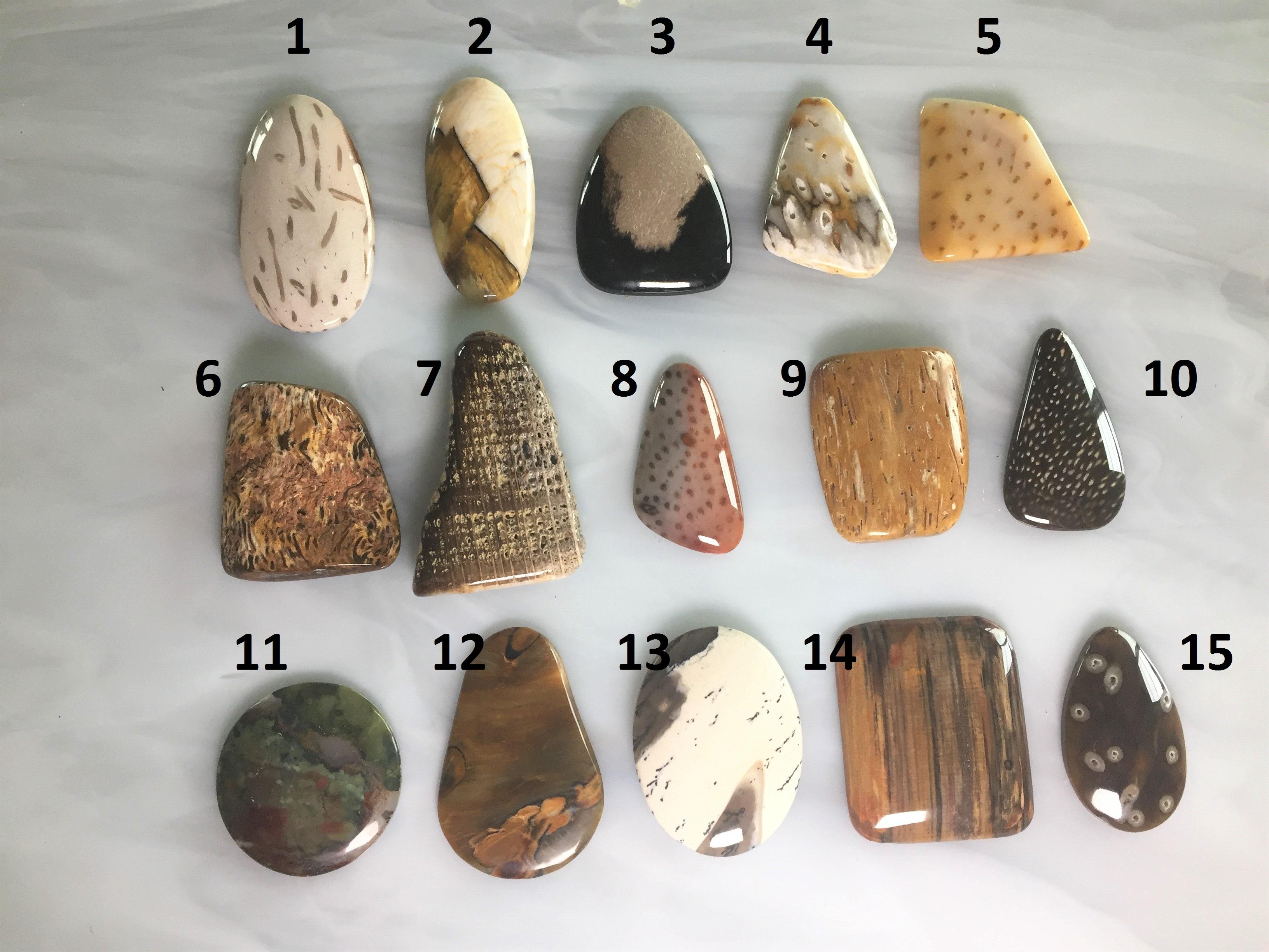 Brown Stone Creek Designer Statement Opalized Wood Neutral Teardrop Cabochon Beige White Large Petrified Australia Cab Fossil