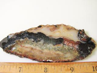 Sagenite Lapidary Slab