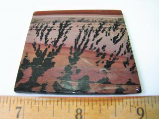 Apache Sage Lapidary Slab