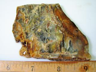 Graveyard Point Plume Agate Lapidary Slab